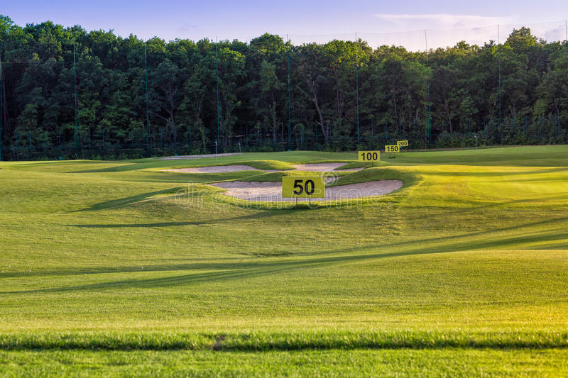 Download Perfect Wavy Grass On A Golf Field Stock Image - Image: 31396159