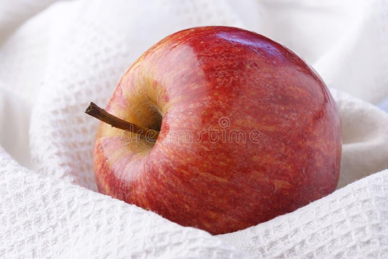 Perfecte appel royalty-vrije stock foto