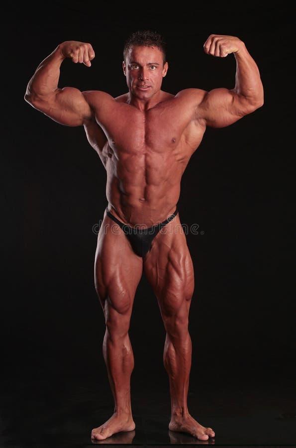 Perfecte bodybuilder stock afbeelding