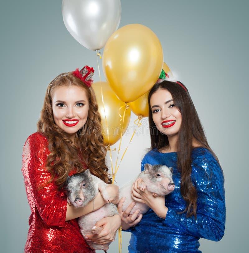 Perfecte glimlachende vrouwen in partijkleding en kleine varkens, vakantieconcept royalty-vrije stock afbeelding