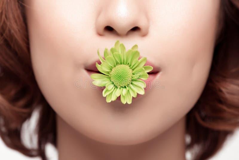 Perfecte Make-up Schoonheidsmanier De lente Aziatische vrouw stock foto