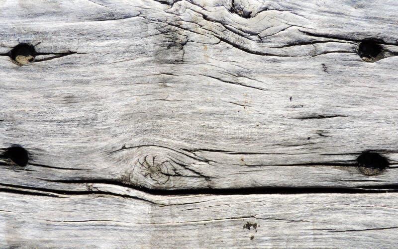 Perfecte natuurlijke grijze houten textuur stock foto
