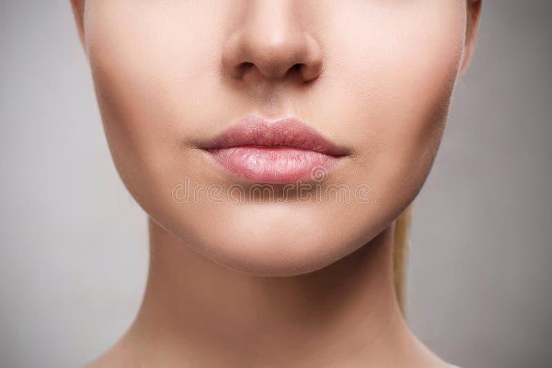 Perfecte natuurlijke lippen van jonge vrouw royalty-vrije stock afbeeldingen