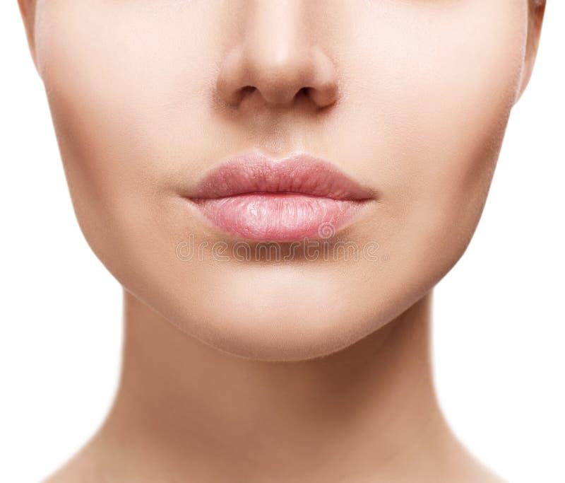 Perfecte natuurlijke lippen van jonge vrouw stock afbeelding
