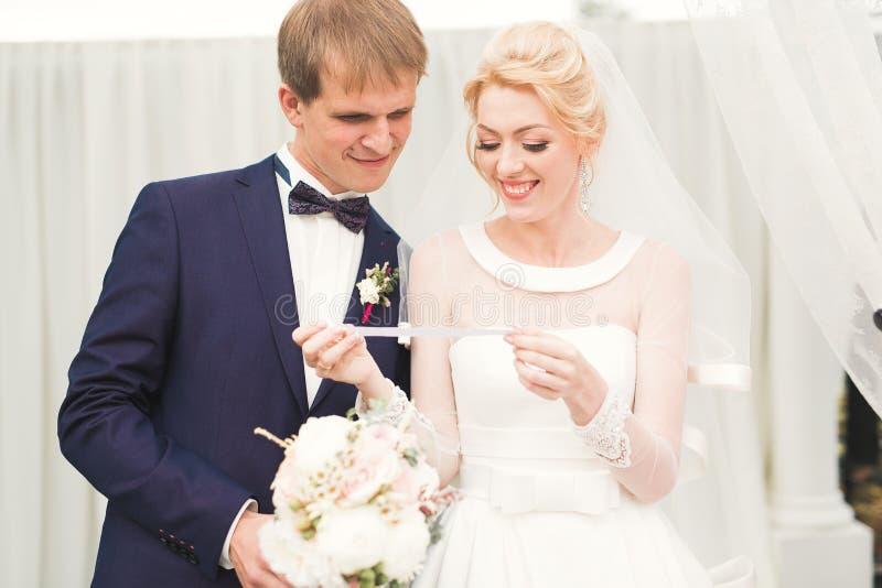 Perfecte paarbruid, bruidegom die en in hun huwelijksdag stellen kussen royalty-vrije stock afbeeldingen
