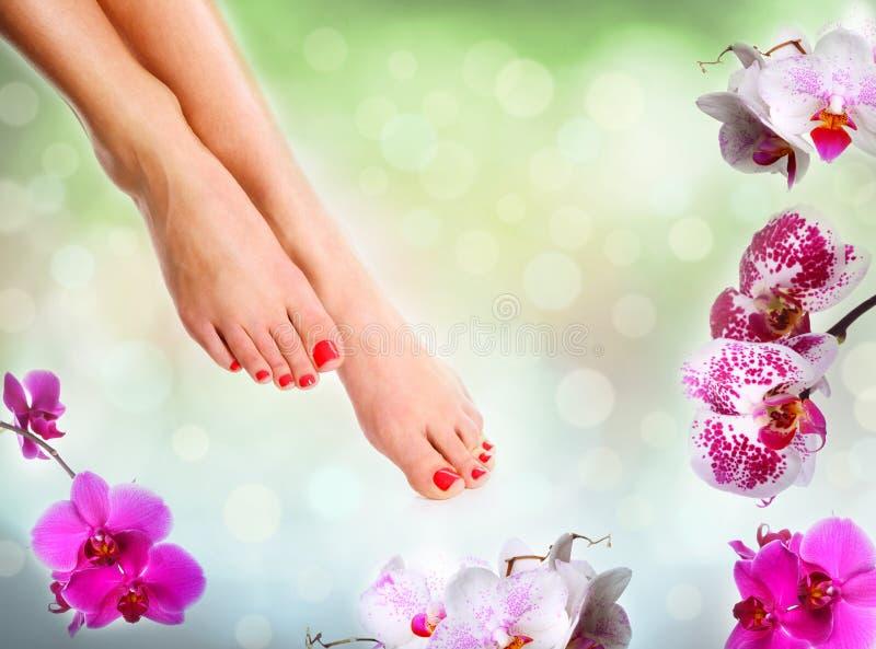 Perfecte vrouwelijke voeten stock afbeelding