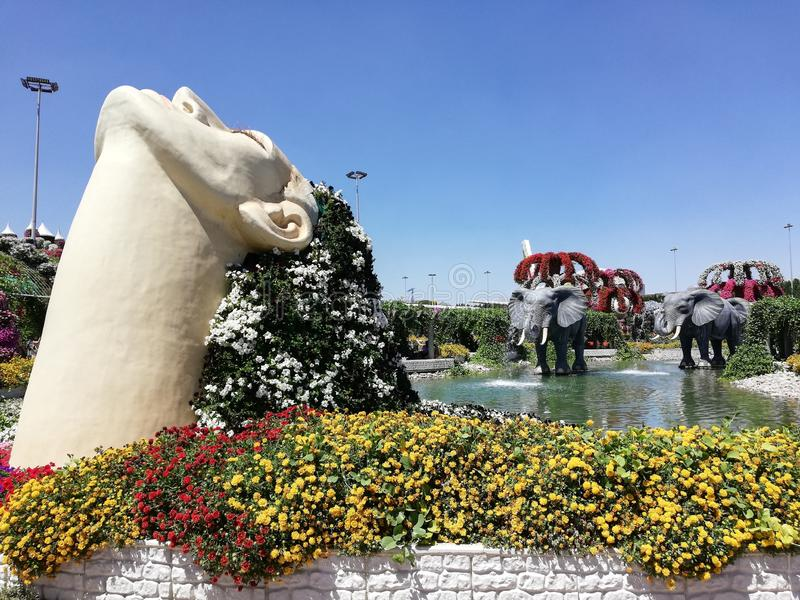Perfekt dag i Dubai mirakelträdgård royaltyfri fotografi