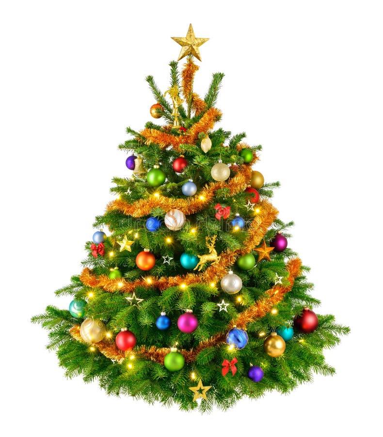 Perfekt färgrik julgran royaltyfri foto