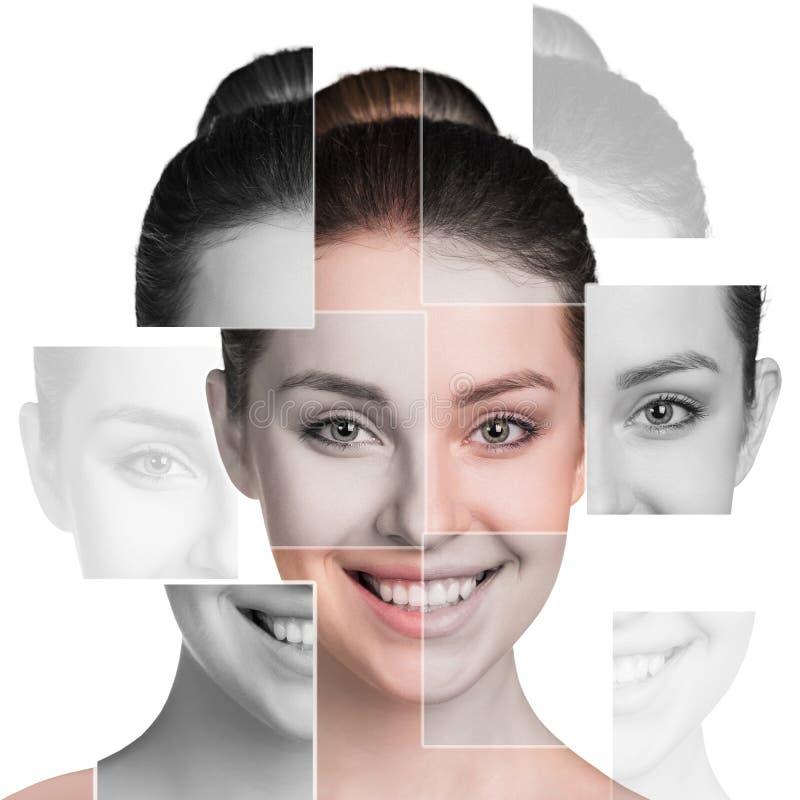 Perfekt kvinnlig framsida som göras av olika framsidor royaltyfri fotografi