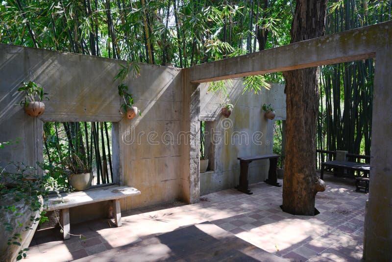 Perfekt levande i grönt Första våningen utan tak och fönster i Kambodja Trädodling genom golv Tropiskt klimat royaltyfri bild