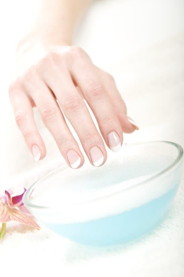 perfekt sund manicure för härligt hår arkivbild