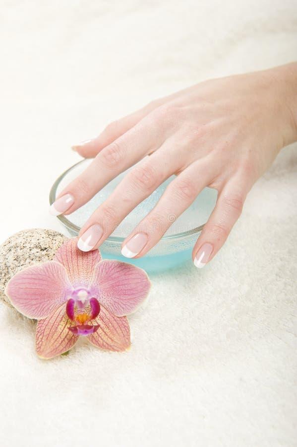 perfekt sund manicure för härligt hår arkivbilder