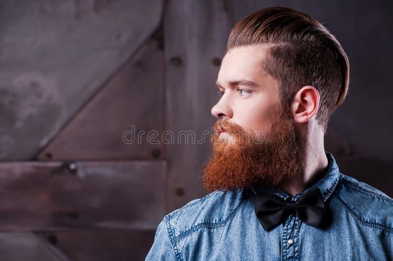 Perfekte Frisur stockbilder