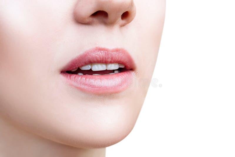 Perfekte nat?rliche Lippen der jungen Frau stockbilder