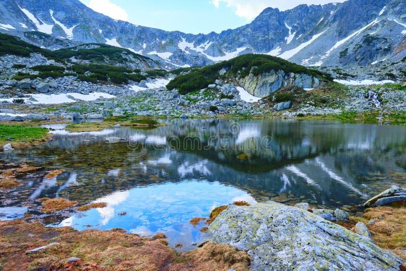Perfekte Reflexion in einem Gebirgssee Pietrele See, Retezat-Berge, mit braunem Moos am Ufer, Felsen im klaren Wasser lizenzfreie stockbilder