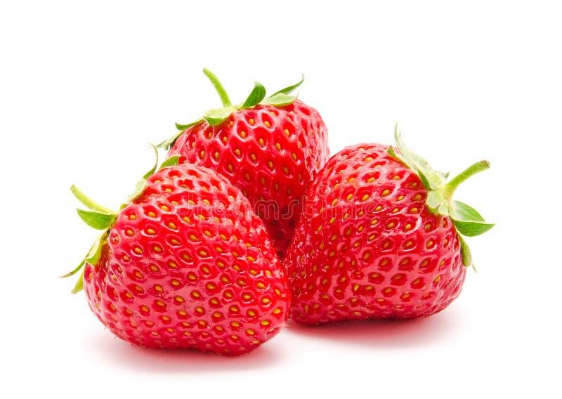 Perfekte rote reife Erdbeere drei lokalisiert lizenzfreies stockfoto