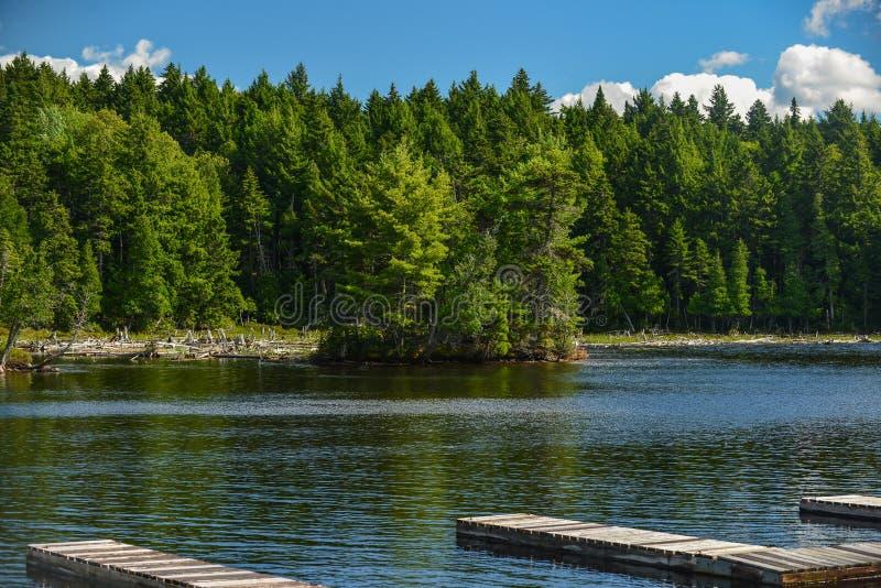 Perfekter Sommer-Tag auf einem ruhigen See stockfotografie
