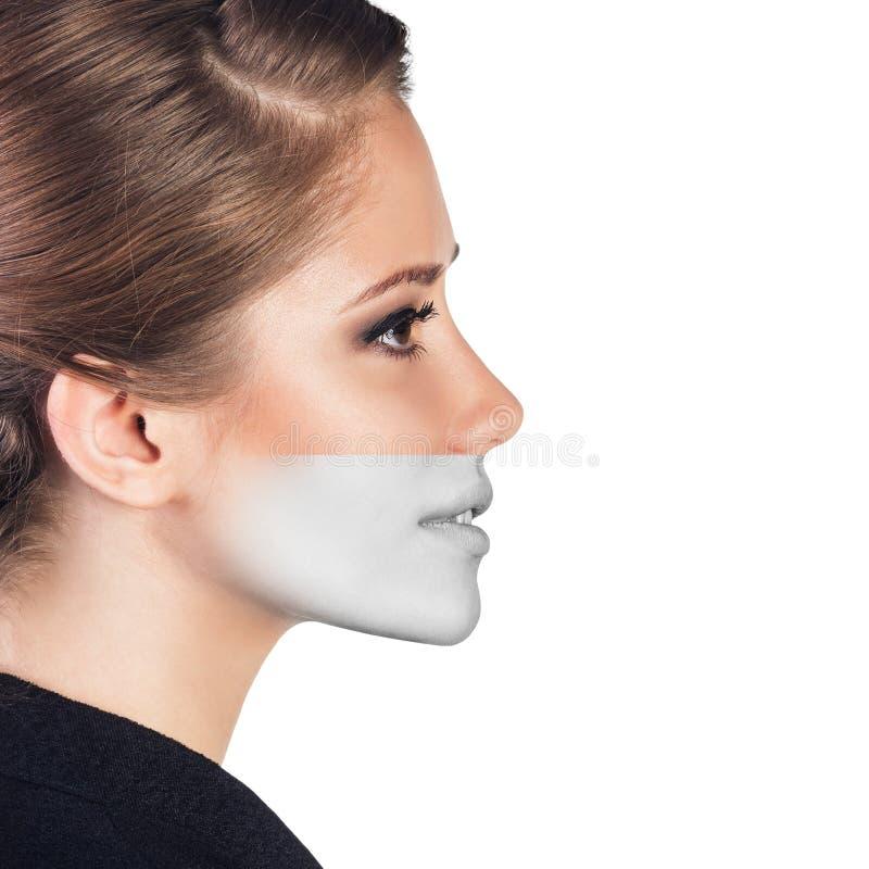 Perfektes weibliches Gesicht gemacht von den verschiedenen Gesichtern lizenzfreie stockfotos