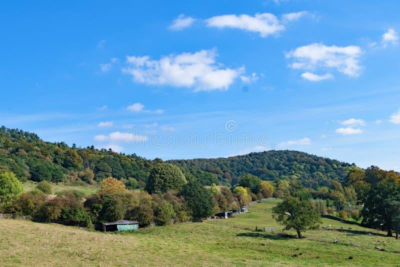 Perfezione pastorale in bello e Bakewell autunnale, Derbyshire fotografia stock libera da diritti