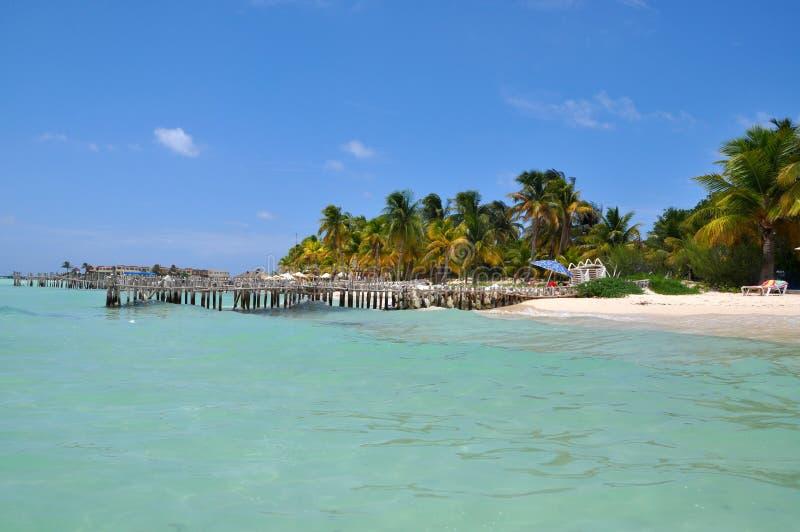 Perfezioni la spiaggia tropicale in Isla Mujeres fotografia stock libera da diritti