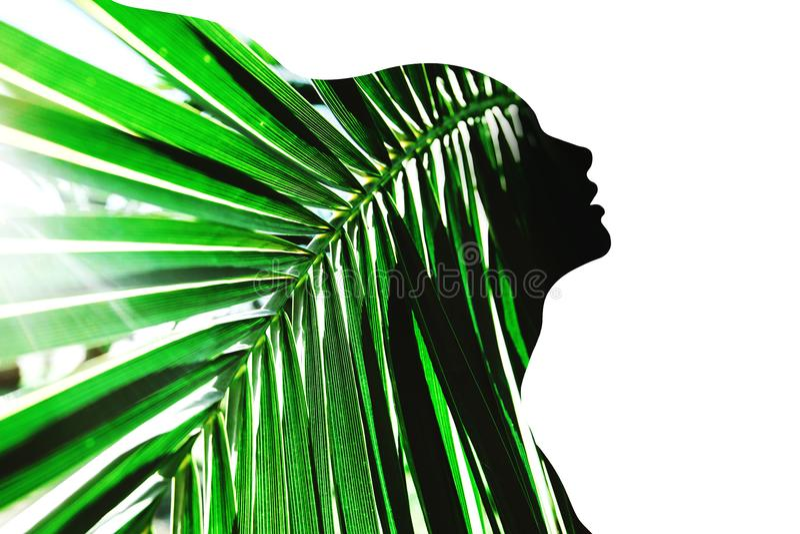 Perfil da mulher bonita com folha de palmeira imagens de stock royalty free