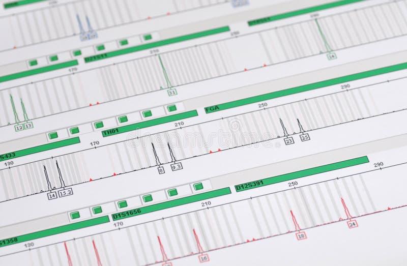 Perfil de la DNA - huella digital genética imagen de archivo