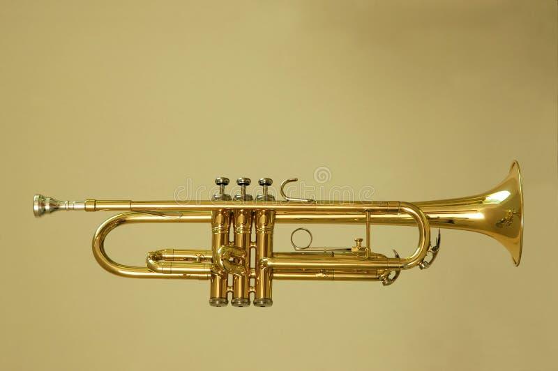 Perfil de la trompeta foto de archivo libre de regalías