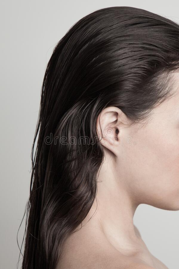 Perfil de mujer joven con pelo largo oscuro y pelo húmedo concepto de belleza natural foto de archivo libre de regalías