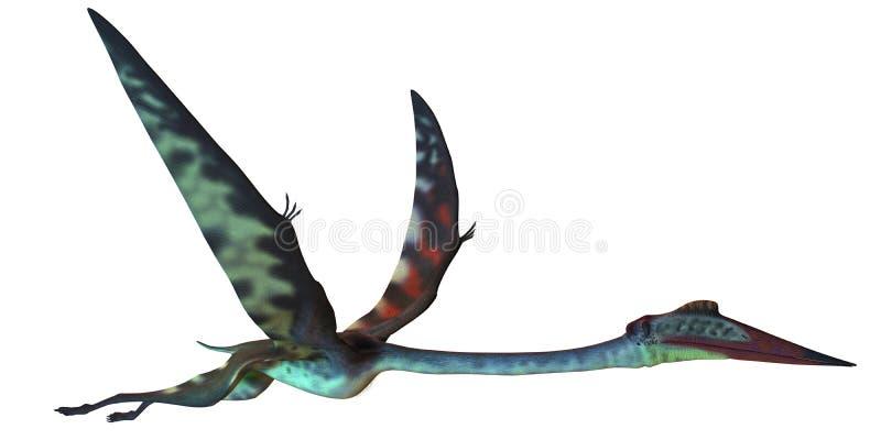 Perfil de Quetzalcoatlus ilustración del vector