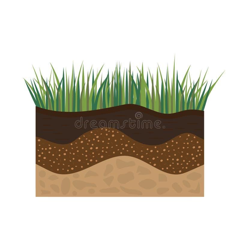 Perfil de suelo con la hierba libre illustration