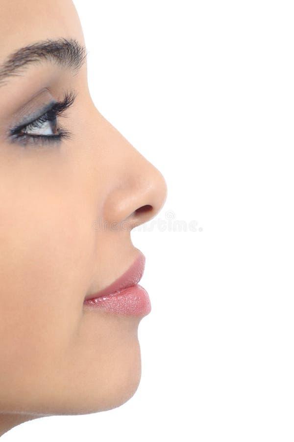Perfil de um nariz perfeito da mulher fotografia de stock royalty free