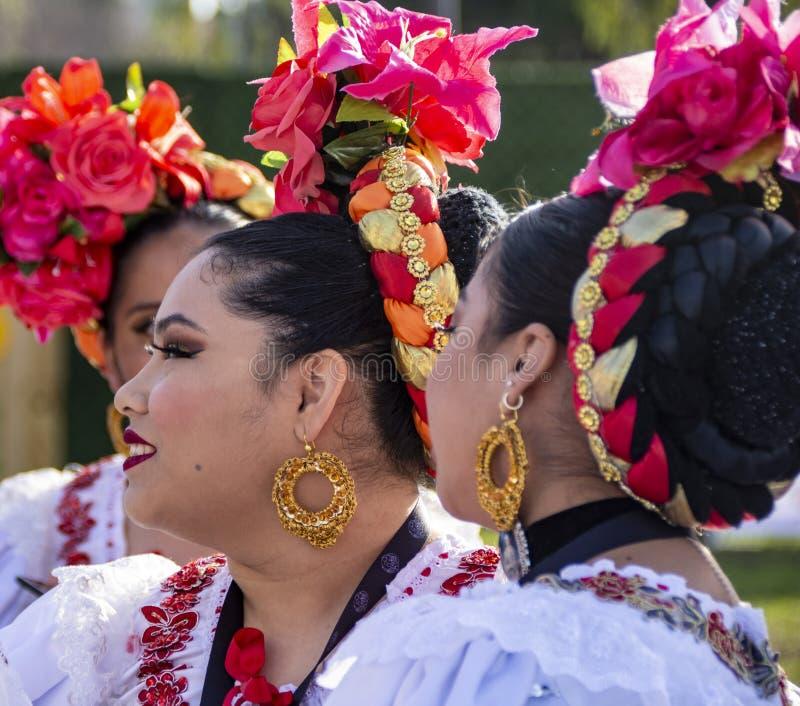 Perfil de uma dançarina Latina da Rosa Parada imagens de stock royalty free