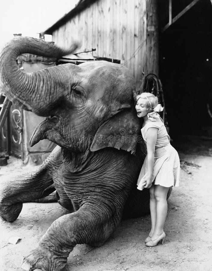 Perfil de uma jovem mulher que abraça um elefante (todas as pessoas descritas não são umas vivas mais longo e nenhuma propriedade fotos de stock