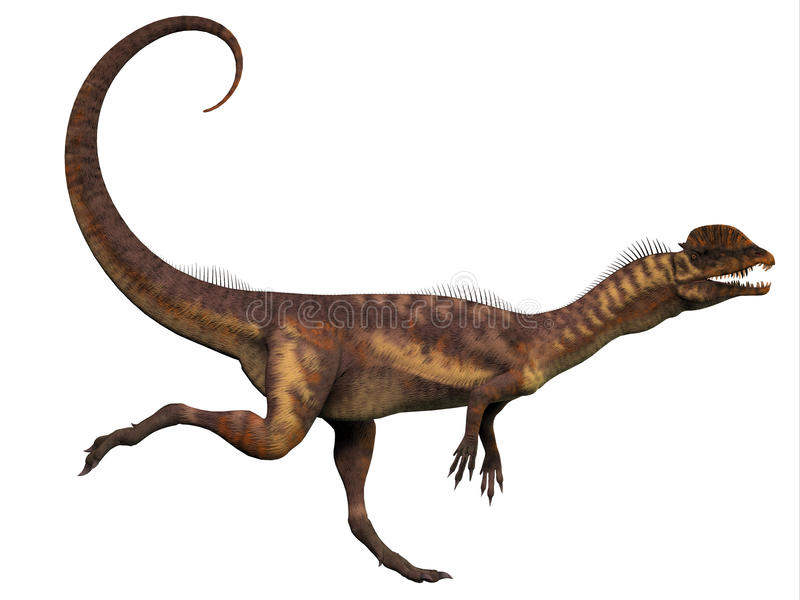 Perfil del Dilophosaurus libre illustration