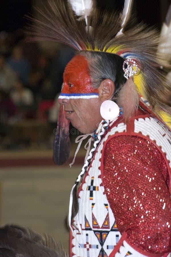 Perfil del nativo americano imagen de archivo