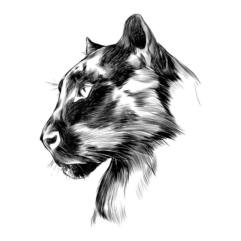 Perfil del ` s de la pantera ilustración del vector