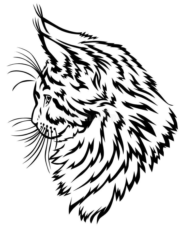 Perfil do gatinho de Maine Coon ilustração royalty free