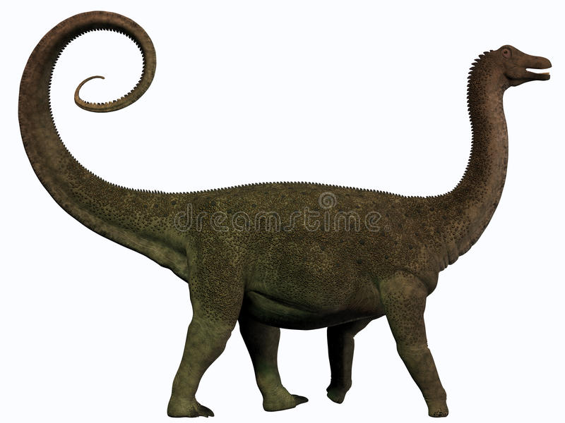 Perfil do Saltasaurus ilustração royalty free