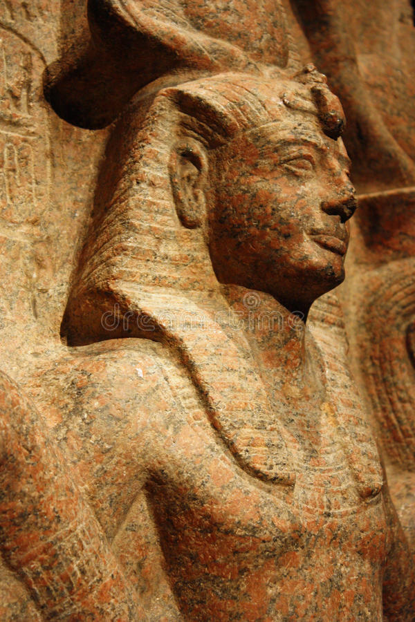 Perfil egípcio fotos de stock royalty free