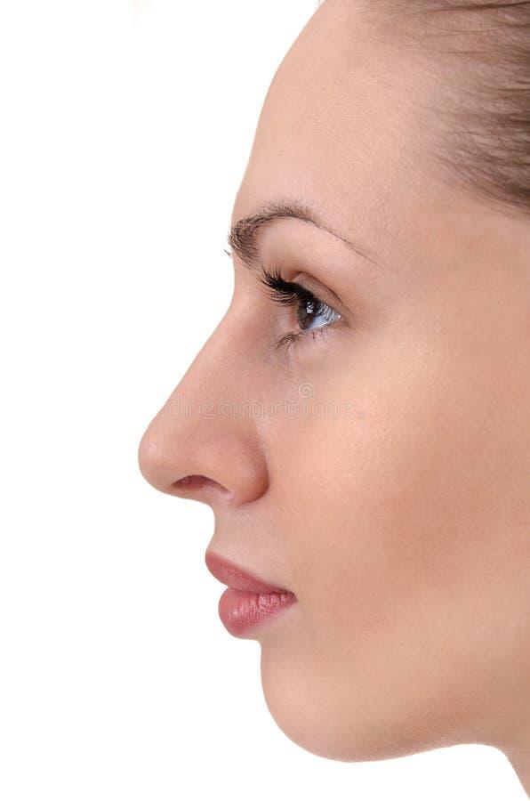 Perfil facial da mulher nova fotos de stock