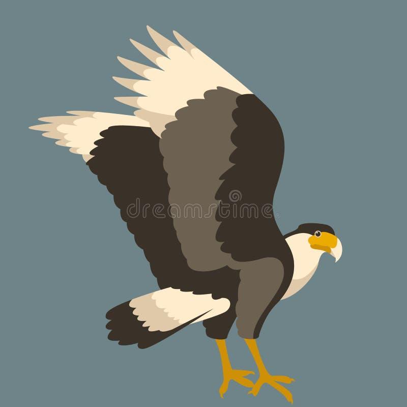 Perfil liso do estilo da ilustração do vetor da águia do Caracara ilustração stock