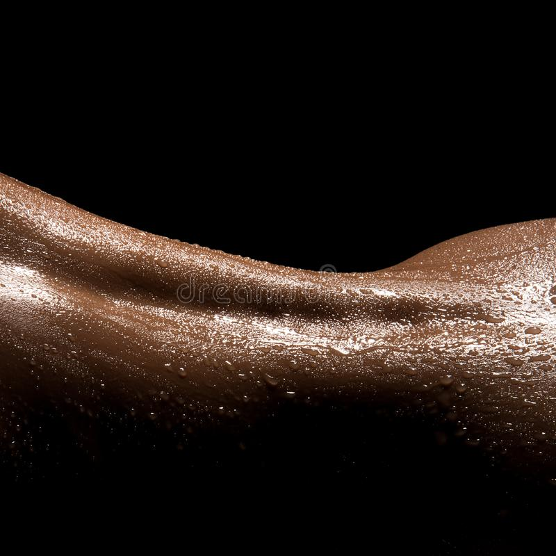 Perfil perfeito do corpo da mulher fotografia de stock royalty free