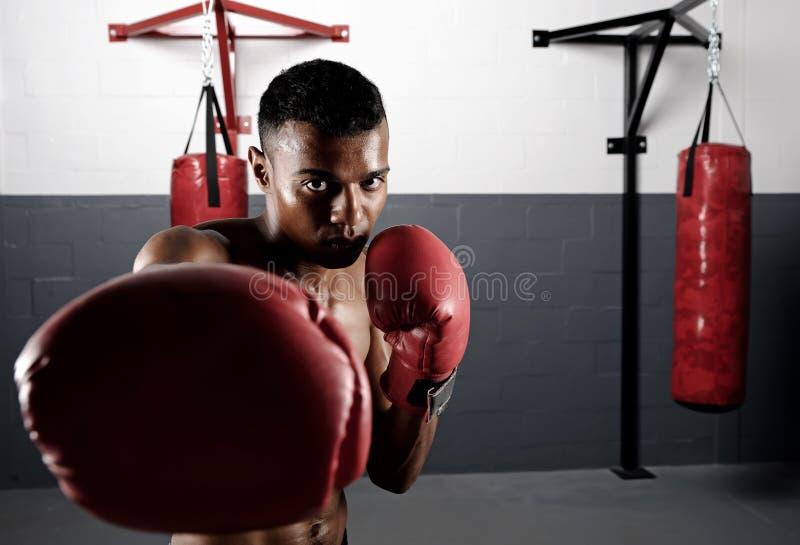Perforación del boxeador fotografía de archivo