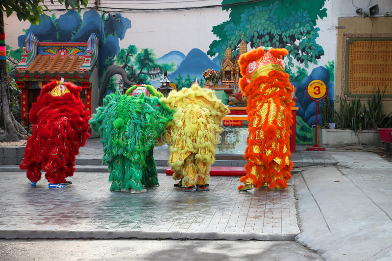 Download Performance Of The Lions Show Editorial Image - Image: 23064880