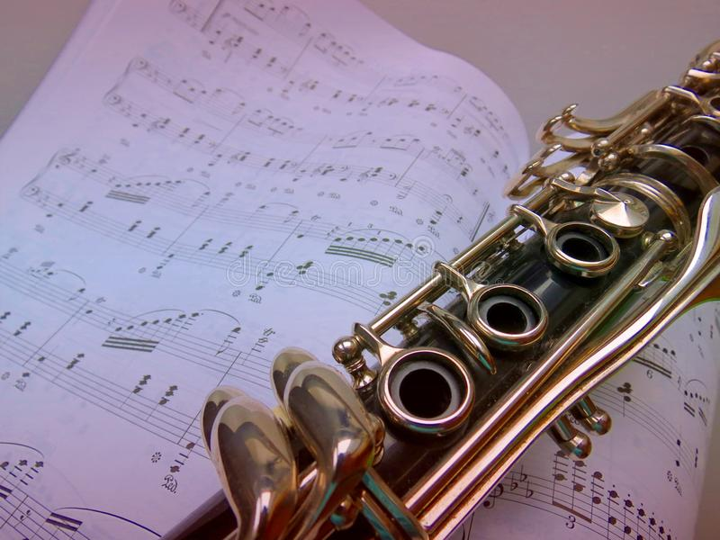 Music Lessons on the Clarinet royalty free stock photography