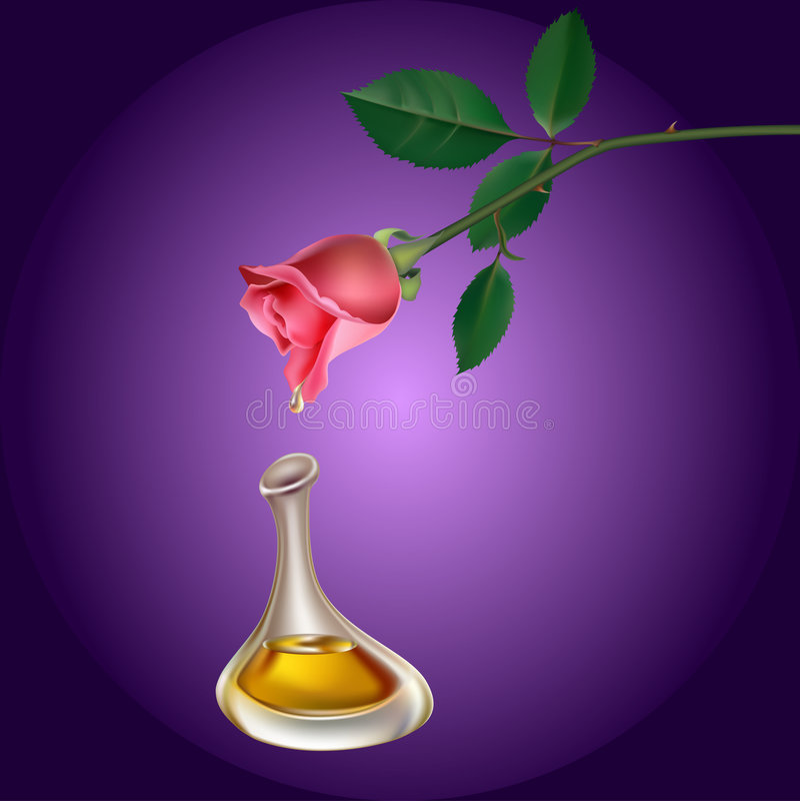 Perfum Tropfen vektor abbildung