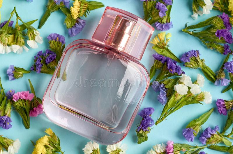 Perfume bottle with colored flowers on blue background composition royalty free stock images
