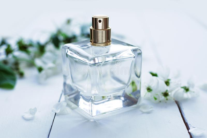 Perfume bottle on light background. Perfumery cosmetics fragrance collection royalty free stock photo