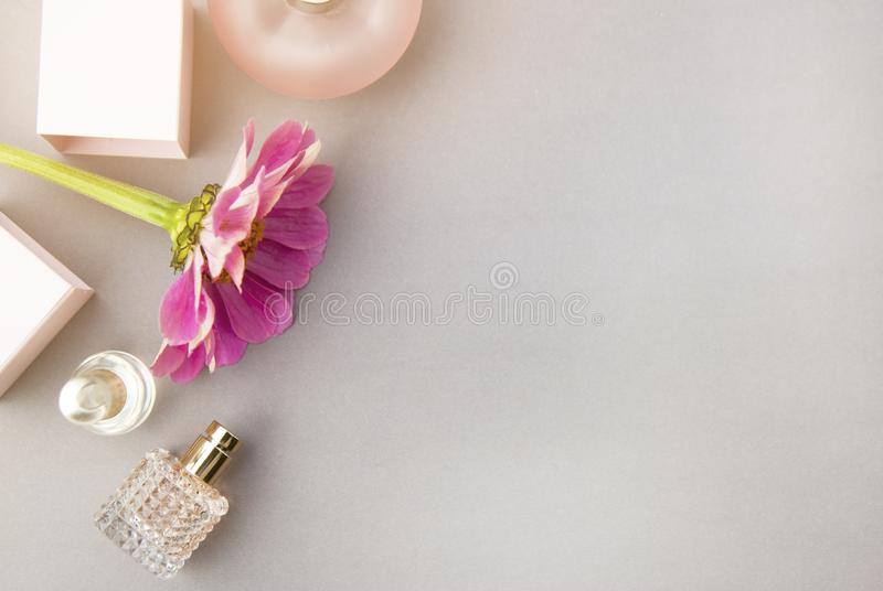 Perfume bottles with pink flower on light background. Perfumery, cosmetics, fragrance collection. Flat lay. Copy space. Perfume bottles with pink flower on stock photography