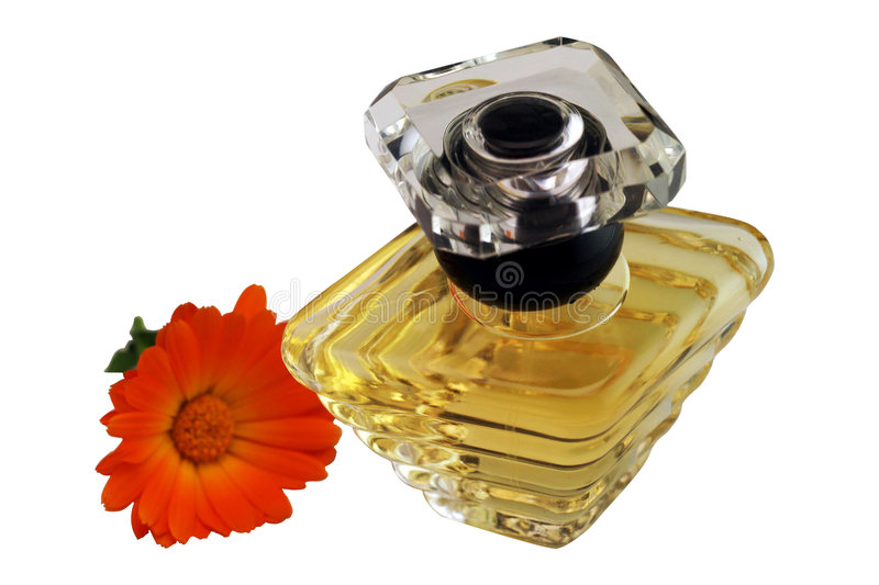 Download Perfume and flower stock image. Image of bloom, smelling - 5240807